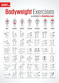 workout plans for beginners at home home exercise plan no equipment epic workout mens home workout plan