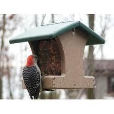 Backyard Nature Products Hopper Bird Feeders Backyard Bird Centre