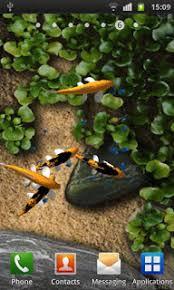 wallpaper ikan bergerak untuk pc download 5 aplikasi wallpaper bergerak android