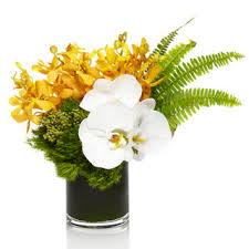 get well flower delivery get well plants h bloom