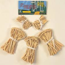 scarecrow costume the wizard of oz scarecrow straw accessory kit buycostumes