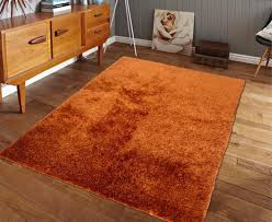 Terracotta Area Rugs by 5 Ft X 7 Ft Terra Cotta Orange Shaggy Area Rug Hand Tufted With