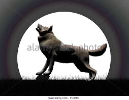 3d render wolf howling moon stock photos 3d render wolf howling