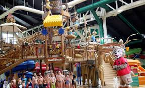 summer for your family great wolf lodge modernmom