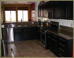 Black Kitchen Cabinet Hardware Popular Kitchen Cabinet Hardware Awesome House