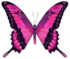 imagenes de mariposas buscar con google centros de mesa