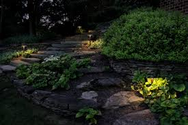 Landscape Flood Light by Photos Hgtv Pathway With Tropical Plants Idolza