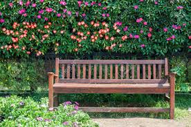 bench woodendtreebench beautiful outdoor bench coral coast