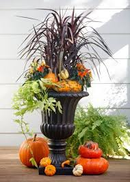 Outdoor Fall Decor Pinterest - 880 best fall gardens and porches images on pinterest porches