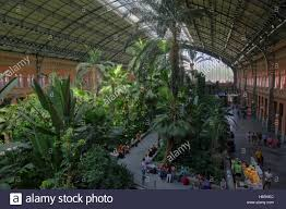 tropical indoor garden in the hall of the atocha station in madrid