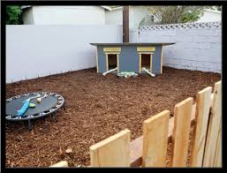dog friendly backyard design ideas