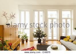 modern loft living room with potted blue spruce tree