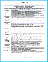 Best Resumes Ever by Marvelous Things To Write Best Business Development Manager Resume
