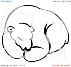 black bear hibernating clipart