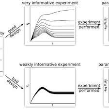 good experimental design figure 2 experimental design procedure based on profile likelihood