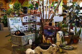 What Plants Are Cubicle Friendly by House Plants Bozeman Mt The Garden Barn