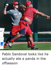 Red Sox Memes - pablo sandoval looks like he actually ate a panda in the offseason