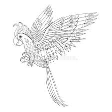hand drawn tribal parrot bird totem for coloring page in
