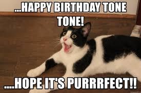 Derp Meme Generator - happy birthday tone tone hope it s purrrfect napoleon