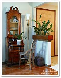 define livingroom our little acre a living room divider define your space with plants