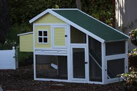 coops mill valley chickens