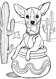 Coloriage chien chihuahua  1001 Animaux