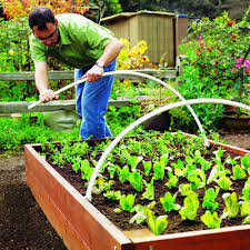 step by step build the ultimate raised bed raised beds beds