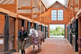 Barn Designs For Horses Designing The Best Barn For Your Budget Equestrian Living