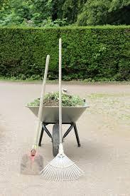 Winter Garden Jobs - winter gardening tips annelise bagley pulse linkedin