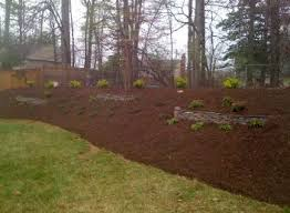 Blue Ridge Landscaping by Landscaping Contractor Professional Landscaping Landscaping