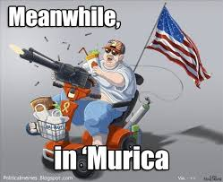 Murica Memes - political memes meanwhile in murica