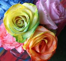 tie dye roses make tie dye rainbow roses the crafty chica