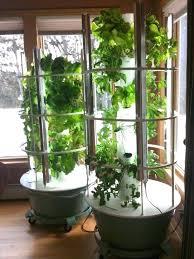 urban indoor herb garden 132 best indoor planting images on