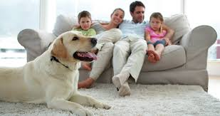 Cute Family Relaxing Together On The Couch In Living Room At Home - Family in living room