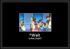 Gold Memes - gold meme by 42dannybob on deviantart