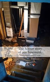 the horror story of our basement time to start the renovation