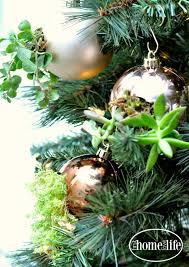 diy succulent ornaments home