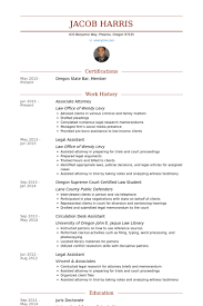 sample resume contract attorney document review sample