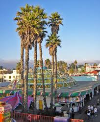 Santa Cruz County Christmas Tree Farms by Santa Cruz California Familypedia Fandom Powered By Wikia