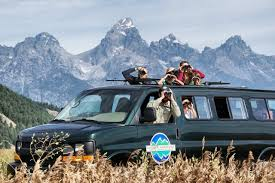 Jackson hole grand teton wildlife tours jackson hole traveler