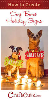 pet christmas best 25 dog christmas cards ideas on dog christmas