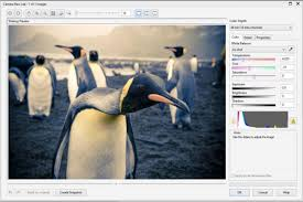 correct images quickly and easily in corel photo paint corel