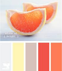 orange gray palette my bizzle bizzle pinterest colors