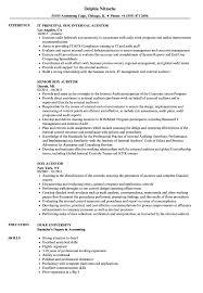 professional examples of resumes sox auditor resume samples velvet jobs