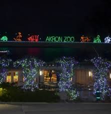 How To Hang Christmas Lights In Room Akron Zoo Experience Our Wild Animals Up Close