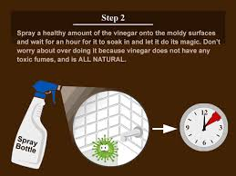 Removing Mold From Bathroom Walls Mold In Window Sills Bathroom - Removing mildew from bathroom walls 2