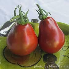 heirloom tomato seeds 27 heirloom tomatoes vegetable seeds