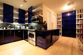 Dark Wood Floor Kitchen by Kitchen With Dark Wood Floors And Light Cabinets Wood Floors