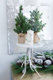 Holiday Decorations Winter White Dinner Party Fashionable Hostess Fashionable Hostess
