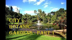 Brisbane Botanic Gardens Mount Coot Tha by City Botanic Gardens Brisbane Part 1 Youtube